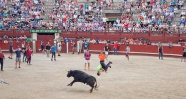El PP estudia acciones legales contra Llorente por eliminar los encierros de las fiestas de Butarque